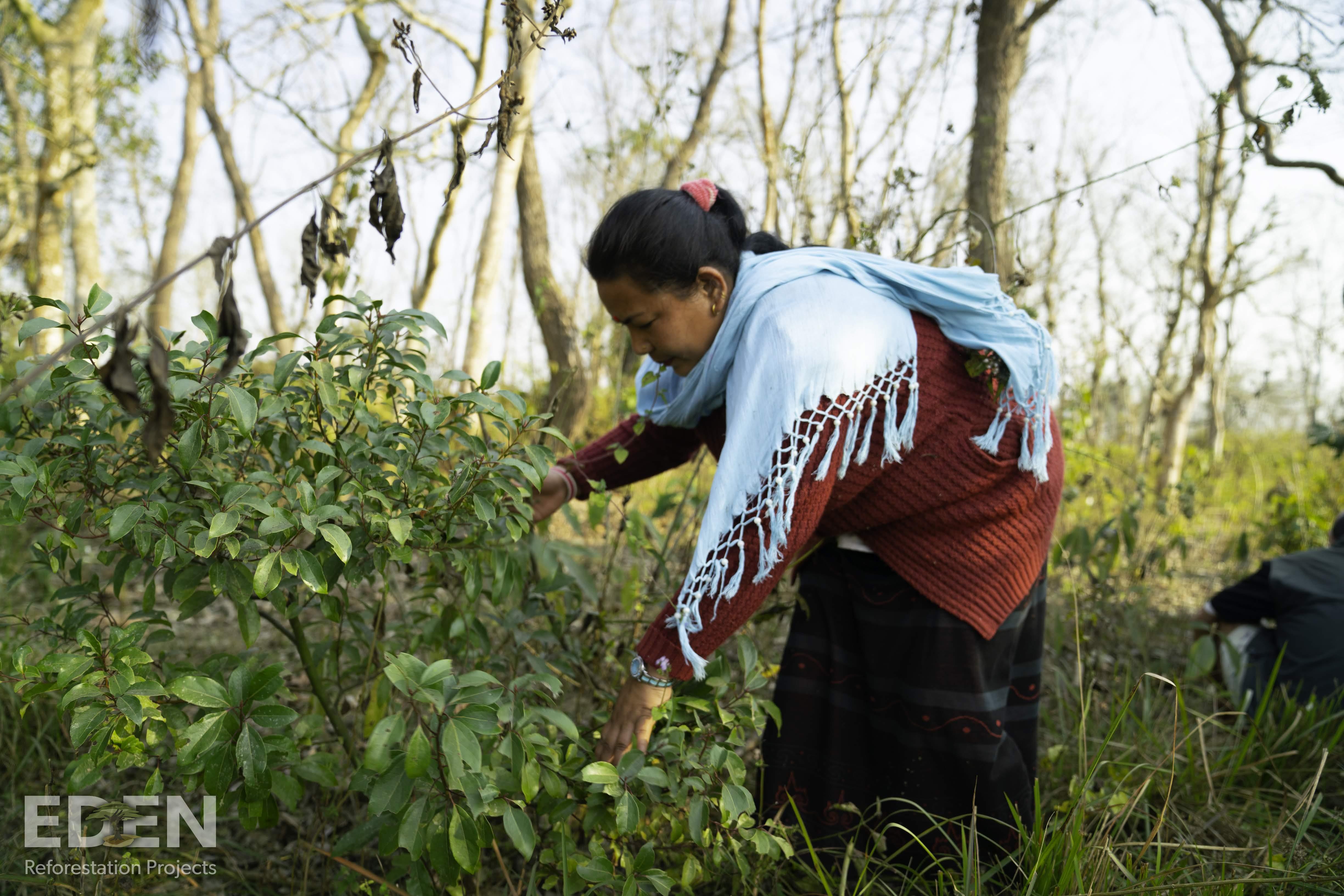Die örtliche Bevölkerung wird in das Schrott24 Umweltprojekt miteinbezogen