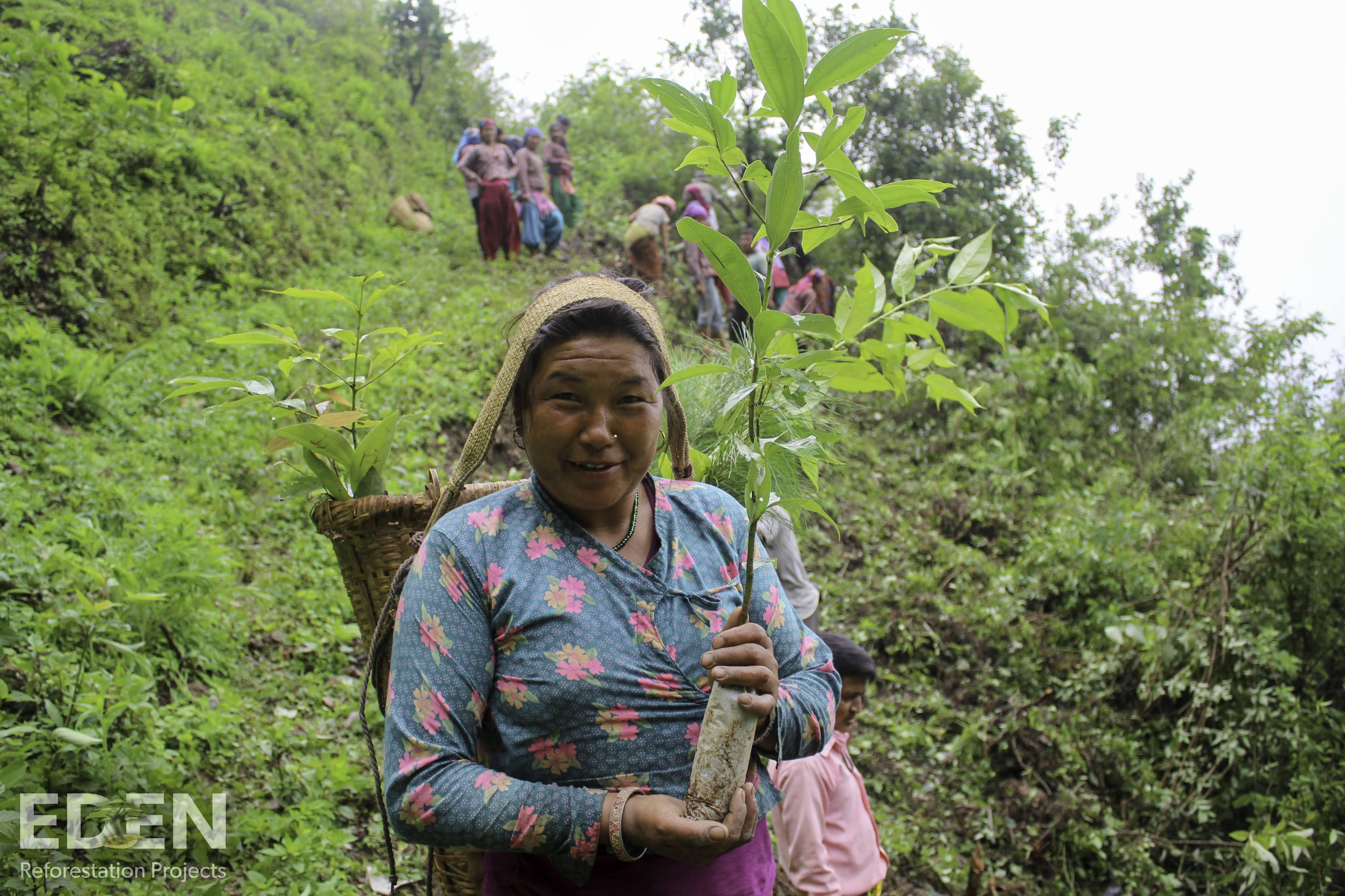 Lokale Leiterin der örtlichen Baumschule von Schrott24 und Eden Projects